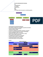 Características de Una Organización Funcional y Por Procesos