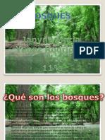 informaticajanynesolofaltavideo-130816174520-phpapp01