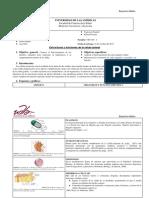 Estructura y Funciones de La Célula Animal (1)
