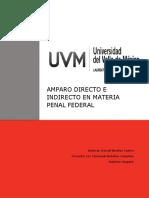 AMPARO DIRECTO E INDIRECTO EN MATERIA PENAL FEDERAL.docx