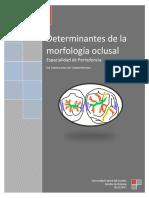 Criterios de la morfología oclusal.docx