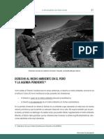DERECHO_AL_MEDIO_AMBIENTE.pdf