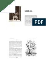 Lewellen t 1983 Introduccion a La Antropologia Politica