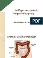Askep Anak dengan Hirschprung prog B.pptx