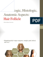 Embriologic, Histologic, Anatomic Aspects Hair Follicle