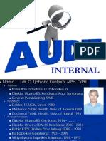 1. Audit Internal