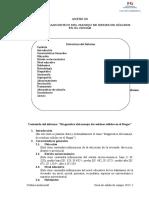 Informe Diagnóstico r.s..