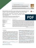 Crude Oil Bioremediation Hidrokarbon Bacterial