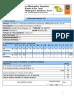 modelo relatório de Projeto social