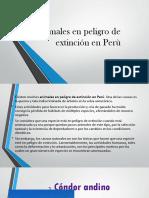 Animales en Peligro de Extinción en Perù