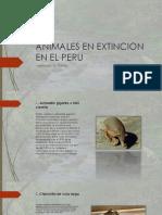 Animales en Extincion en El Peru