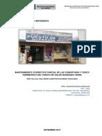 TDR - QUEBRADA VERDE.docx