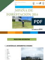pasos_para_reforestacion.ppt