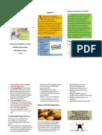 Leaflet Gout Arthtritis 2