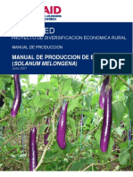 64155764-Manual-de-Produccion-de-Berenjena-Final.pdf
