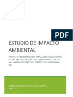 13.3 Estudio de Impacto Ambiental (1)