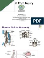 Cidera Spinal Dian Aul.pptxfix