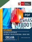 Brochure - OSHAS 18001