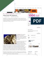 Aleaciones Del Magnesio _ La Guía de Química
