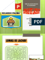 Lomas Lachay