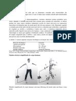 Segurança Eléctrica1.docx