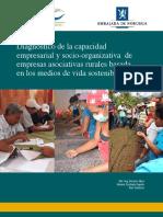 Diagnostico_de_la_capacidad_empresarial.pdf