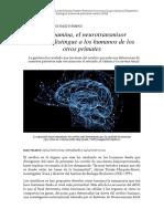 La Dopamina, El Neurotransmisor Que Más Distingue a Los Humanos de Los Otros Primates (LA VANGUARDIA)