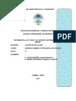 Informe de La Ley 29325 y El Decreto Supremo 0022