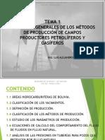 Tema 1a - Pgp220
