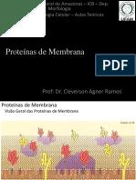 04 - Proteínas de Membrana