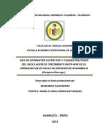 245963549-Tesis-Bugambilla.pdf