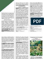 d01_cox-fundamentos_v1.pdf