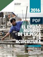 Fao Pesca Peru