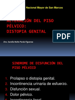 dolor perineal xd 3