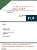 20. Lesiones vulva y vagina.pptx