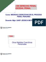 003 Pptsesion03 Med Coercitivas