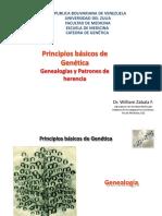 2 Tema Nº 2 Genealogias y Patrones de Herencia 2016