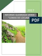 Informe Quebrada Verde
