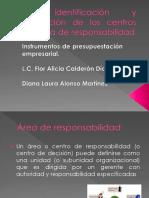 Identificación y Evaluación de Los Centros Por Área de Responsabilidad