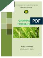 Gramíneas Cultivados y Naturales en La Sierra (1)