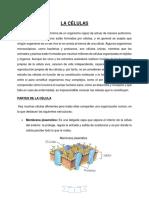 LA CELULAS.docx