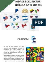Oportunidades Del Sector Hortofrutícola Ante Los Tlc Presentación Final