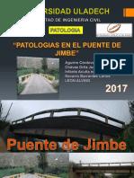 Puente de Jimbe Patologias (3)