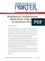 Multilateral Architectures Hold Major Potential