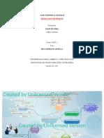 MIND MAP ElkinBecerra 7 (2)