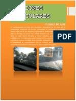 318927301-EMISIONES-VEHICULARES.pdf