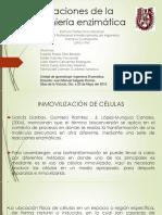 ALU 15EB FATIMA DEL CARMEN GUTIEREZ FONSECA 28835 Assignsubmission File Aplicaciones de La Ingeniería Enzimática Y 2016
