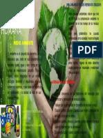 EcologíaHumanaKatlyTorresUnadGrupo363