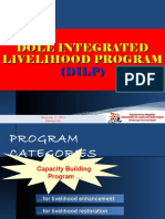 dilppresentationfordipologwomenfederationrd-131121113212-phpapp01