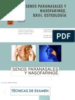 XXII Senos Paranasales y Nasofaringe. XXIII Osteologia